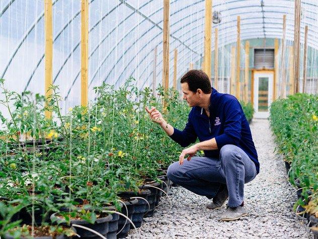 Seeds19.jpe