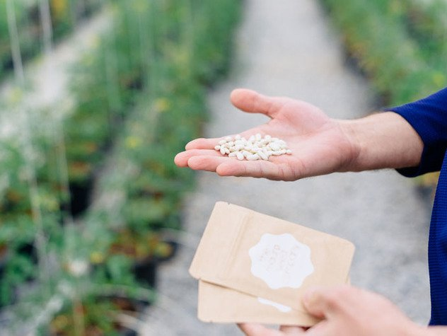 Seeds20.jpe