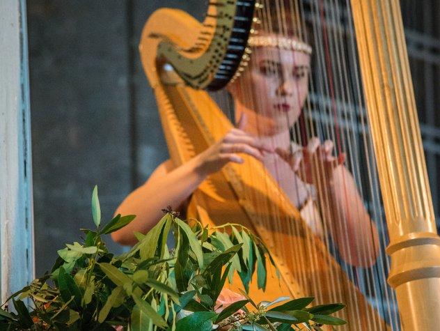 Live-Harpist.jpe