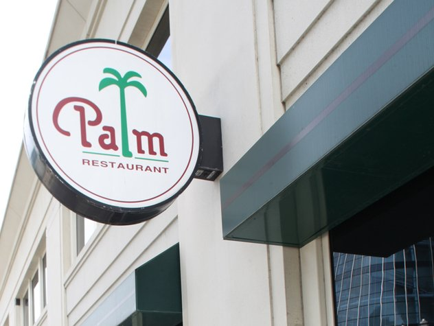 Palm.jpe