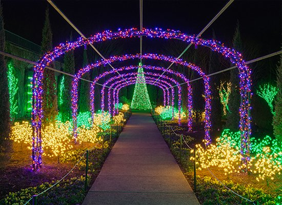 Holiday LIGHTS Buy Tickets Page Photo.jpg