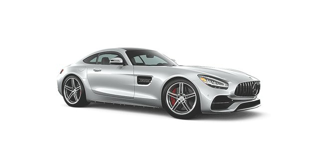 2020-AMG-GTC-AVP-DR grey big.jpg