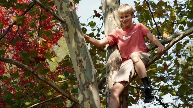 Austin in Tree.jpeg